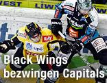 Francois Fortier (Capitals) und Adrian Veldeman (Black Wings)