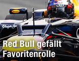 Rennfahrer Sebastian Vettel
