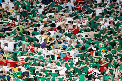 Irische Fans mit dem Rücken zum Spielfeld