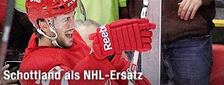 Drew Miller, Detroit Red Wings