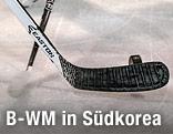 Eishockeyschläger und Puck