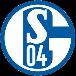 Flagge von Schalke 04