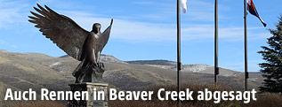 """""""Birds of Prey""""-Vogelstatue in Beaver Creek"""