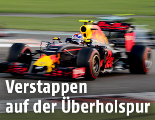 Max Verstappen (Red Bull Racing) beim Grand Prix of Abu Dhabi
