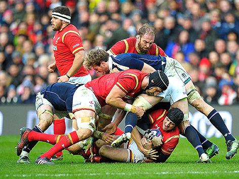 Rugbymatch Schottland gegen Wales