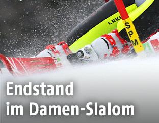 Beine, Skier und Slalomstange