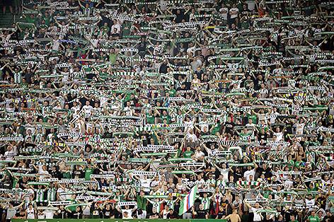 Fans im Stadion