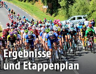 Fahrerfeld der Tour de France